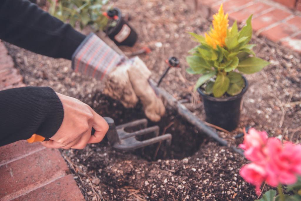 make time to garden
