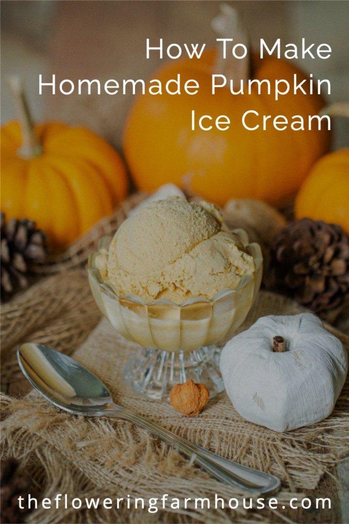 pumpkin ice cream served in a bowl