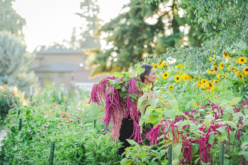 harvesting fall flowers is part of preparing your garden for winter