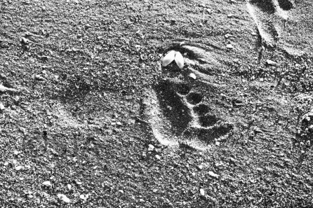 footprint-black-and-white