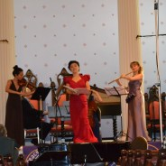 Mimi Stillman and Dolce Suono Ensemble: Concert Review