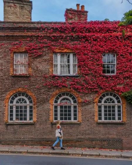 One of my favourite instagram spots in London in autumn is Frognal in Hampstead