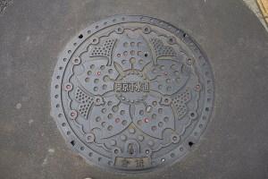 Tokyo water main cover