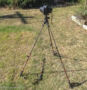 Trekking pole camera mount