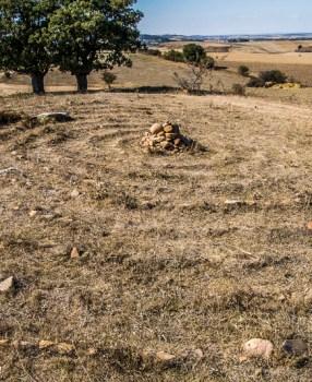 Camino Frances: Haven't seen you in Agés…