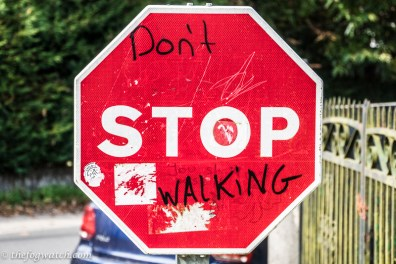 Camino - Don't stop walking