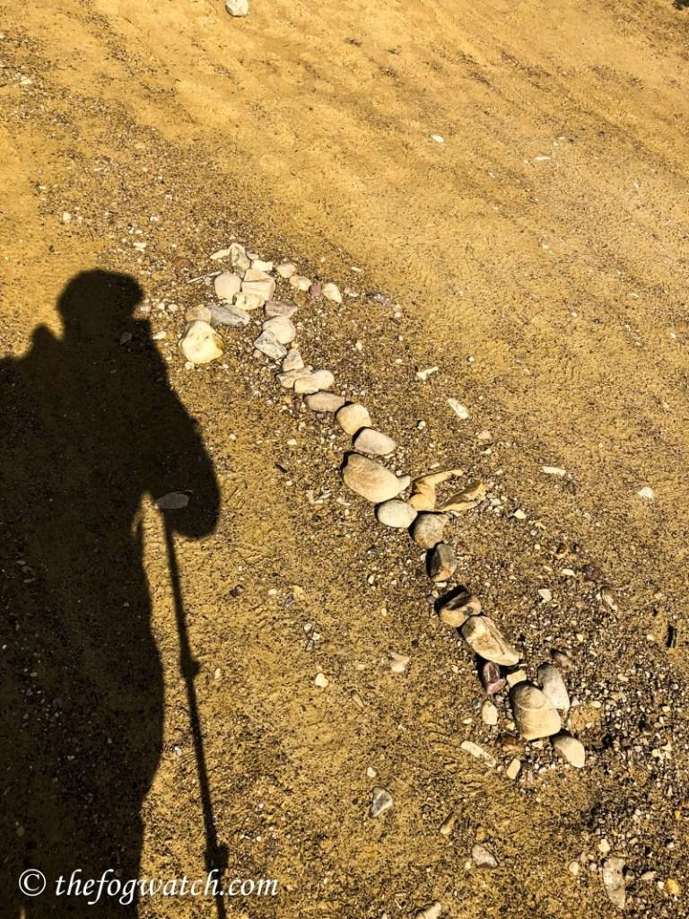 pilgrim shadow
