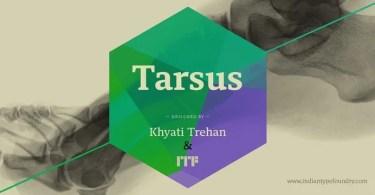 Tarsus [5 Fonts]