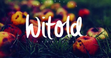 Witold Script [3 Fonts]