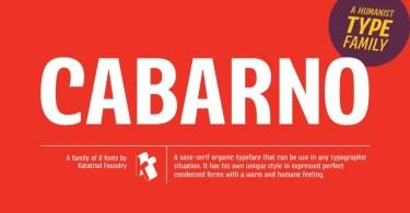 Cabarno [8 Fonts]