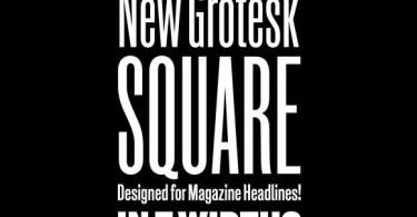 New Grotesk Square [7 Fonts]