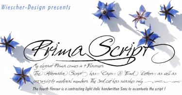 Prima Script [4 Fonts]