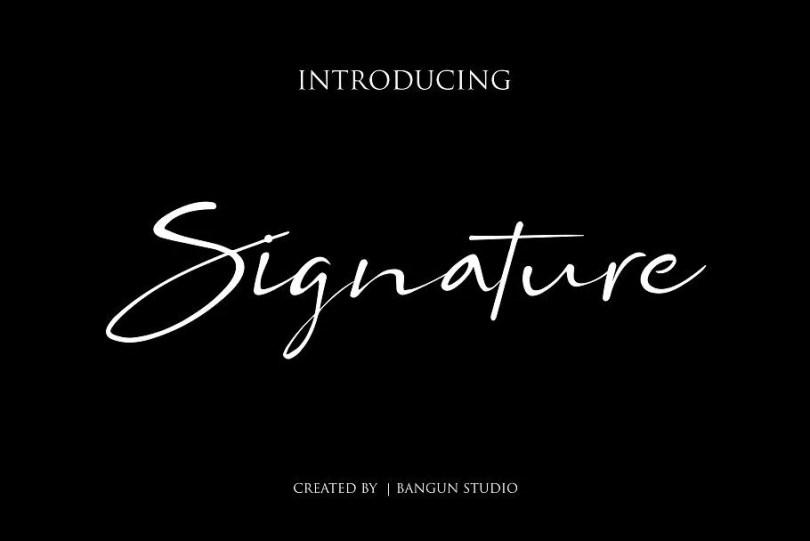 Bs Signature [1 Font]   The Fonts Master