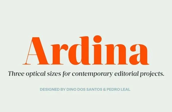Ds Ardina Text Super Family [10 Fonts] | The Fonts Master
