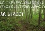 Cedar Street [1 Font]