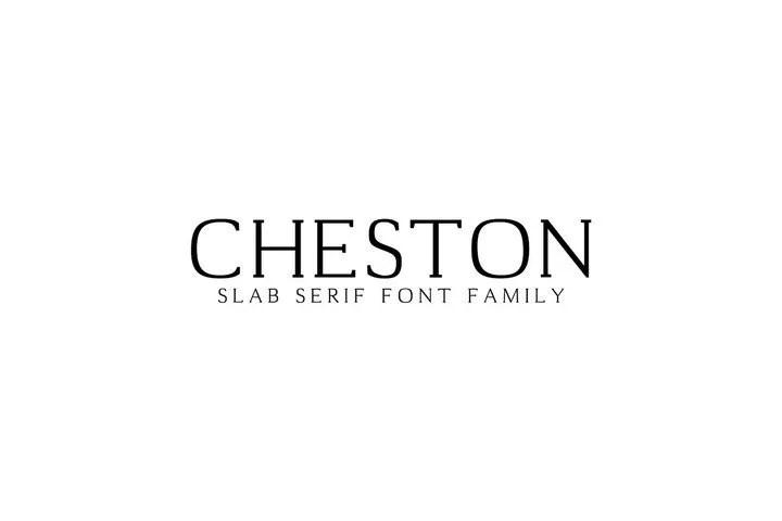 Creativetacos Cheston [4 Fonts] | The Fonts Master