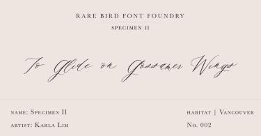 Rare Bird Specimen II Super Family [1 Font]