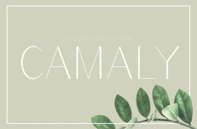 Camaly [3 Fonts] | The Fonts Master