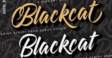 Blackcat Script [2 Fonts]