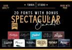 Ydhra Studio - Spectacular Bundle [25 Fonts]