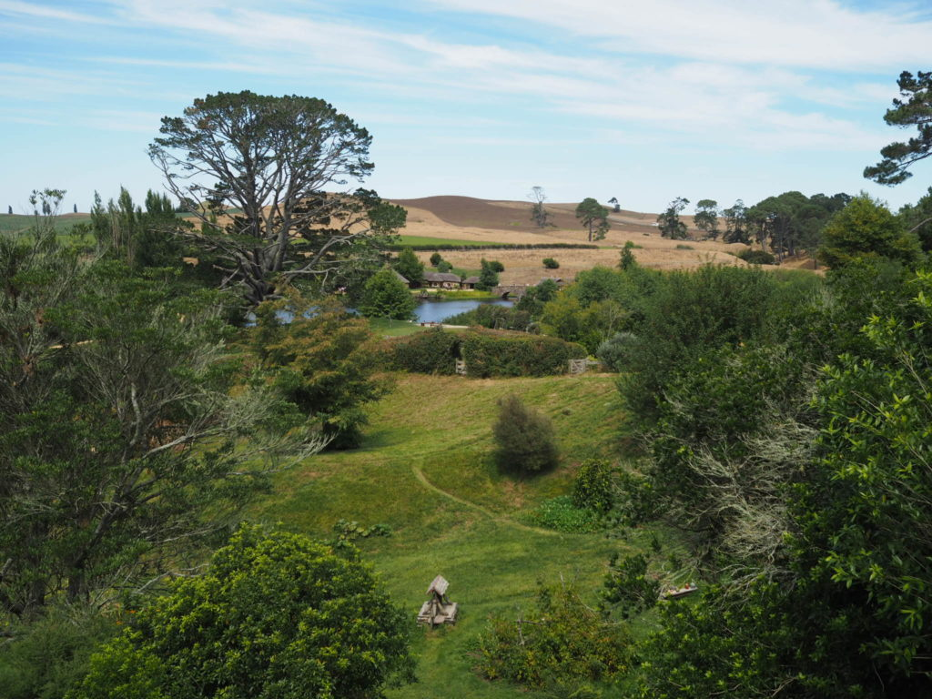 Hobbiton-movie-set-tour-farm