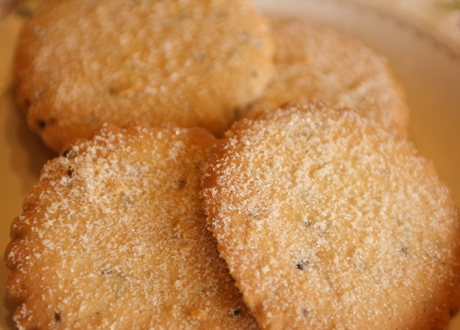 12 New Mexican Biscochitos Recipes