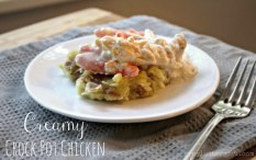 Creamy Crock Pot Chicken recipe photo
