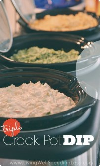 Triple Crock Pot Dip recipe photo