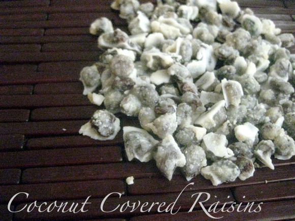 Coconut Covered Raisins recipe photo