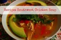 Southwest Chicken Soup recipe photo