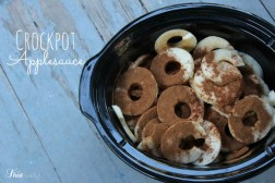 Crockpot Applesauce (in Under 10 Minutes) recipe