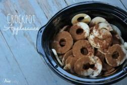 Crockpot Applesauce (in Under 10 Minutes) recipe