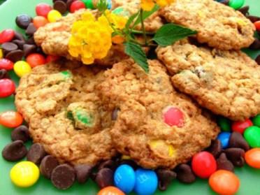 Monster Cookies recipe (91 calories)