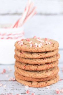 Candy Cane Pudding Cookies recipe