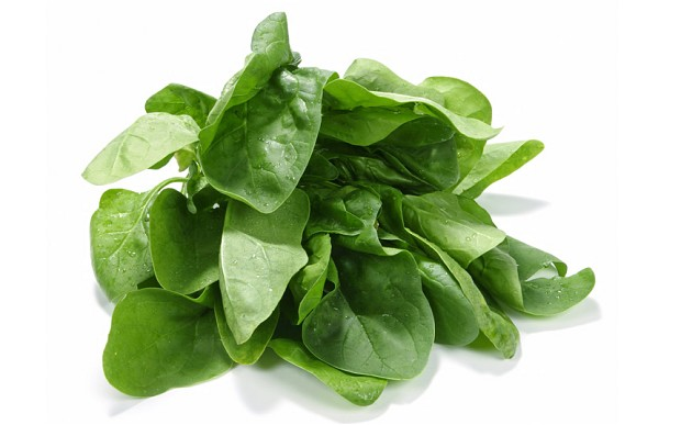 Top 15 Healthiest Vegetables On Earth - 14 Spinach
