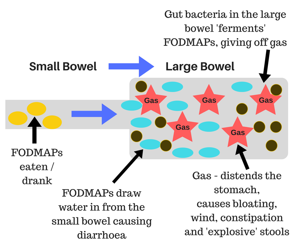 low FODMAP diagram