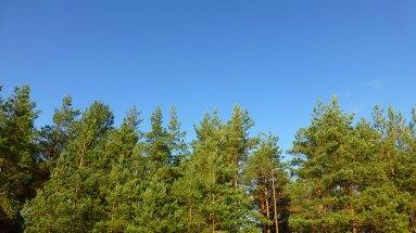 blue_skies_hankley