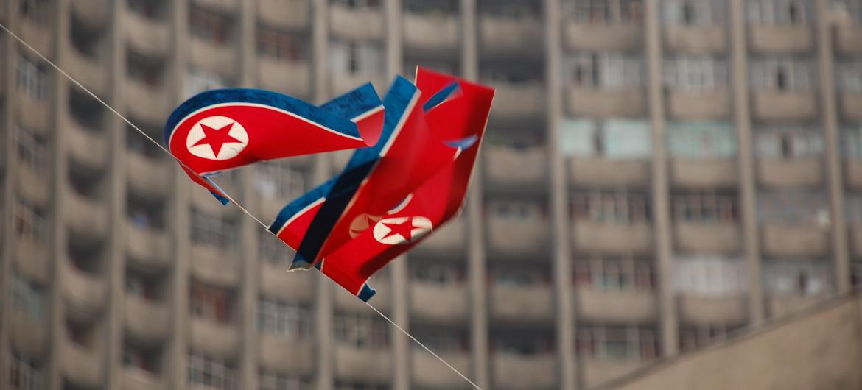 DPRK flag