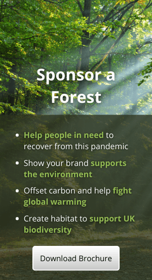 Sponsor a forest