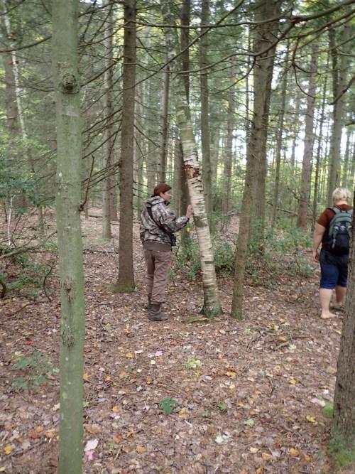Kersey and Mike exploring bear sign