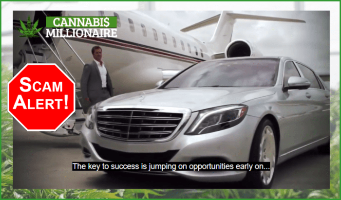 Cannabis Millionaire Software
