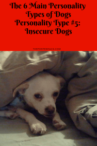 Personality Type 5: Insecure Dogs