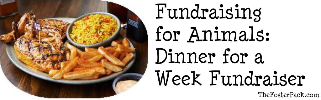 Fundraising for Animals: Dinner for a Week Fundraiser