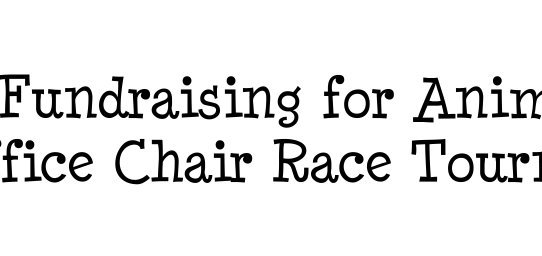 Fundraising for Animals: Office Chair Race Tournament