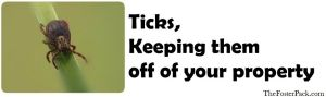 Ticks, Keeping them off of your property