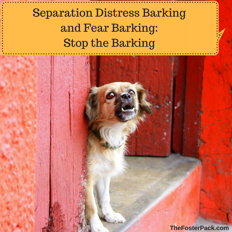 Separation Distress Barking and Fear Barking: Stop the Barking