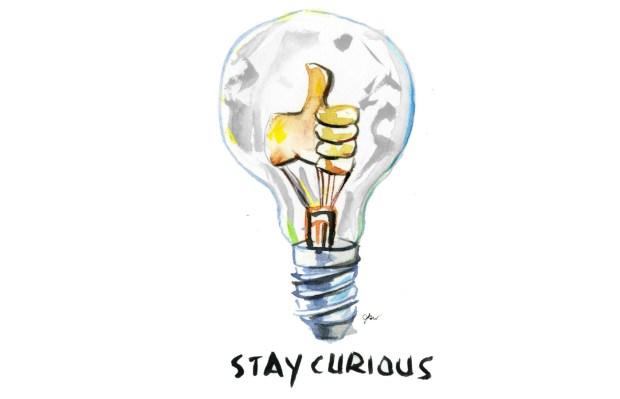 stay curious_thefrancofly_jessie kanelos weiner