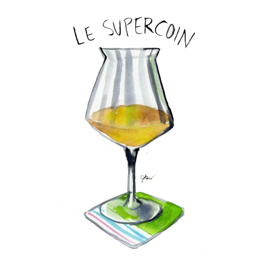 11 Le supercoin_Jessie Kanelos Weiner