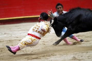 dwarf bullfighting video
