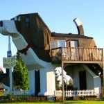 The dog hotel for man and pet